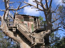 treehouse homes for sale how to build you can live in amazing