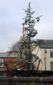 the tree in ottery st had been