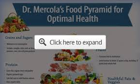 dr mercola u0027s updated nutrition plan your guide to optimal health