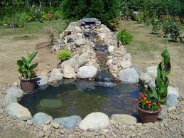 Backyard Bassin - comment faire son propre bassin de jardin en quelques étapes