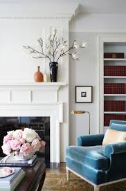 Blue Chairs For Living Room by 434 Best Furniture Bookshelves Images On Pinterest Bookcases