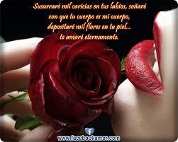bonitas de rosas rojas con frases de amor imagenes de amor facebook imágenes bonitas de rosas rojas con frases de amor imágenes
