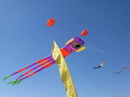 tips for attending 85th annual zilker kite fest free fun in austin