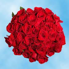 global roses roses overnight global