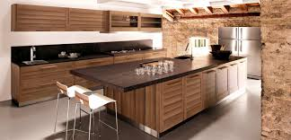 wood cabinets with glass doors zebra wood kitchen cabinet doors u2022 kitchen cabinet design