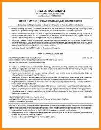 Director Of Ecommerce Resume It Director Resume Lukex Co