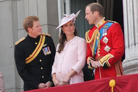 princes william and harry donating 100 million to hurricane