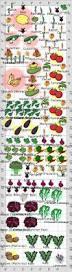 innovative companion vegetable garden layout free vegetable garden