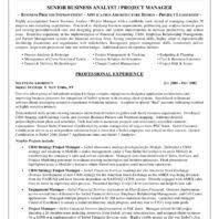 It Business Analyst Resume Examples by Sample Objective And Key Skills Business Analyst Resume For