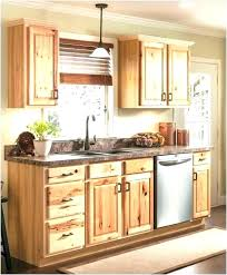 9 inch base cabinet unfinished 9 inch base cabinet unfinished wide pantry cabinet stunning inch 9
