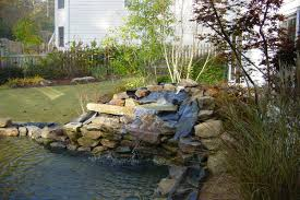 100 how to build a waterfall in your backyard waterfall