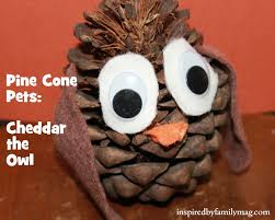 nature walk craft pine cone pets