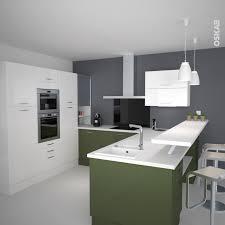 cuisiniste meilleur rapport qualité prix cuisine verte et blanche ouverte sur le séjour implantation en u