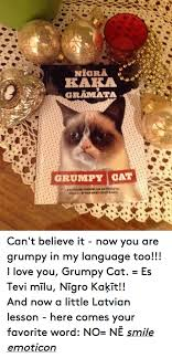 19 Best Love That Grumpy - 25 best memes about i love you grumpy cat i love you grumpy