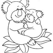 koala bear coloring page color luna