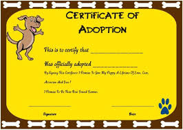 fun certificate templates toy adoption certificate template 13 free word templates