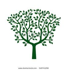 green tree leafs vector illustration stock vector 548741293