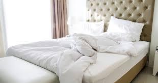 nostalgia home decor sleepless elite genetic mutation short sleep cycle