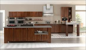 Kitchen Cabinets Financing Kitchen Framed Kitchen Cabinets Tan Kitchen Cabinets Kitchen