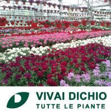 carrefour mobili da giardino piante fiori arredo giardino casa e fai da te strumenti