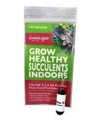 succulent kits succulent fertilizer plant food