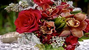 types of flowers with pictures hgtv