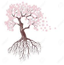 tree with pink blossoms royalty free cliparts vectors and