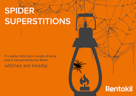 spider superstitions and history on halloween debugged