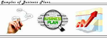 chicken farm business plan samples of business plans