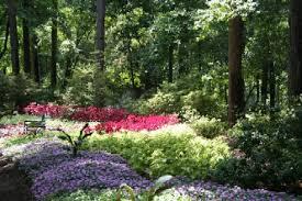 fresh flower arrangements in the strangest places