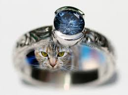 ashes into diamonds ashes to diamonds would you wear your dead pet as jewelry