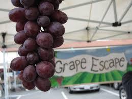 morgan hill halloween city grape escape at morgan hill farmers u0027 market u2014 california farmers