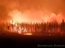 Wildfire Kootenays by From The Chilcotin B C Wildfire Front A Rotational Grazer U0027s