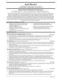 Sample Project Manager Resumes by Sample Project Manager Resumes Free Resume Example And Writing