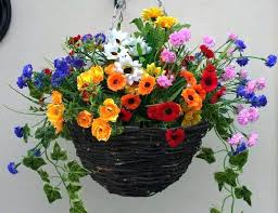 flower baskets hanging flower baskets pictures ghanko