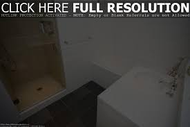 small bathroom shower stall home design interior with remodeling
