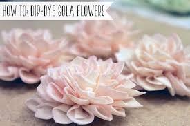 sola flowers how to dip dye sola flowers wanderlove press