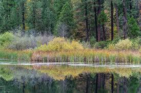 autumn colors northern california photograph michael rubin