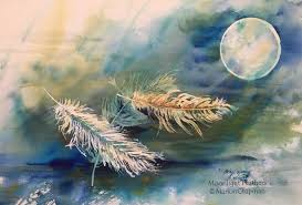 moonlight feathers marion chapman artist moonlight feathers