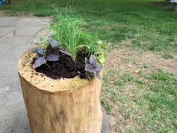 how to turn a dried out log into a garden planter how tos diy