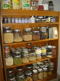 the happy raw kitchen raw pantry essentials