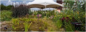 backyards compact make backyard chipping greens course 2014 11