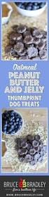 recipe homemade peanut butter dog treats with blueberries bruce
