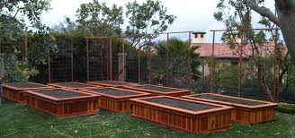 Elevated Home Designs Elevated Vegetable Garden Beds Home Decorating Interior Design
