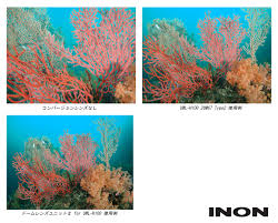 inon news 2014