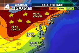fall color nearing peak conditions nbc4 washington
