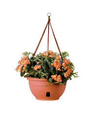 self watering containers garden pots u0026 planters