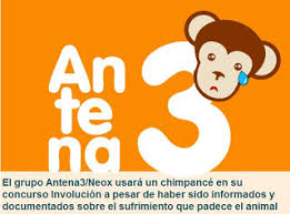 Movimientos Encadenados Mayo 2011 - stop al maltrato animal mayo 2011