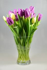 How To Take Care Of Flowers In A Vase 10 Ways Not To Offend People In Russia Goabroad Com
