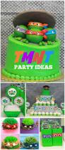 Teenage Mutant Ninja Turtles Easter Egg Decorating Kit by 125 Best Teenage Mutant Ninja Turtles Images On Pinterest Ninja